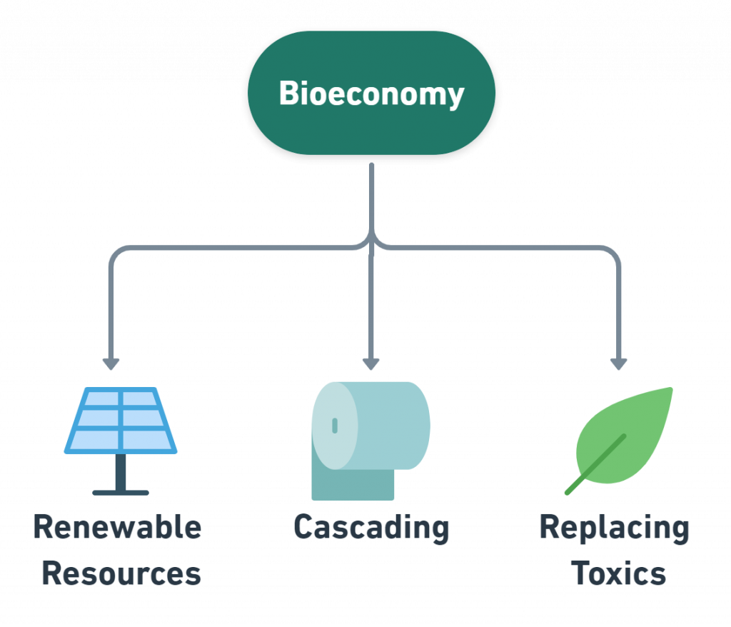 business models bio-economy examples