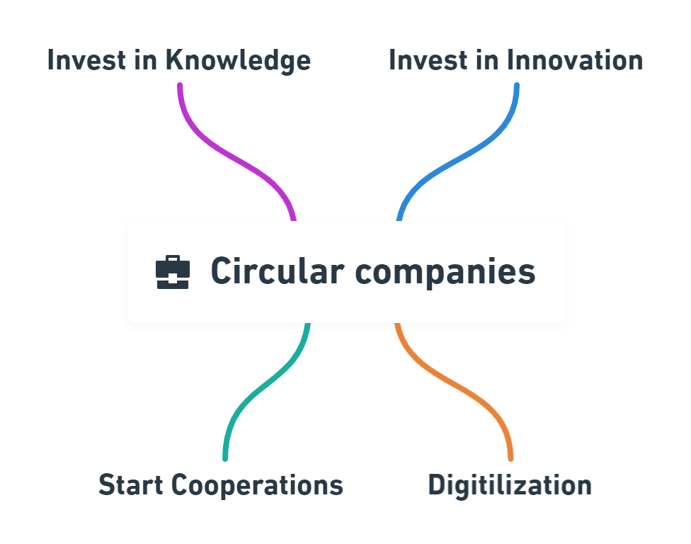 circular companies practices examples